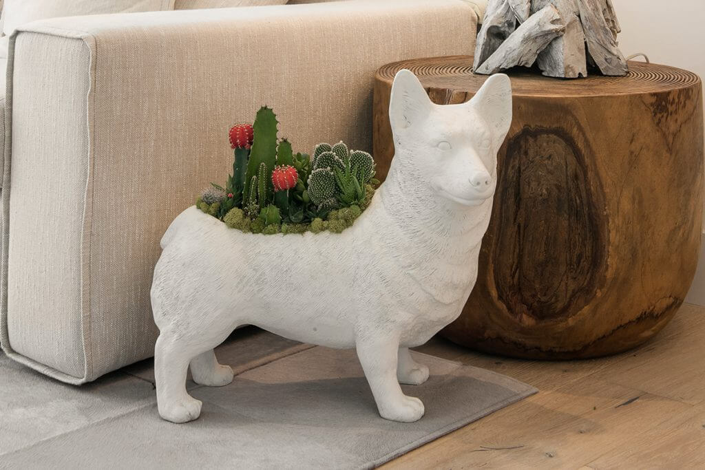 unique planters to buy online