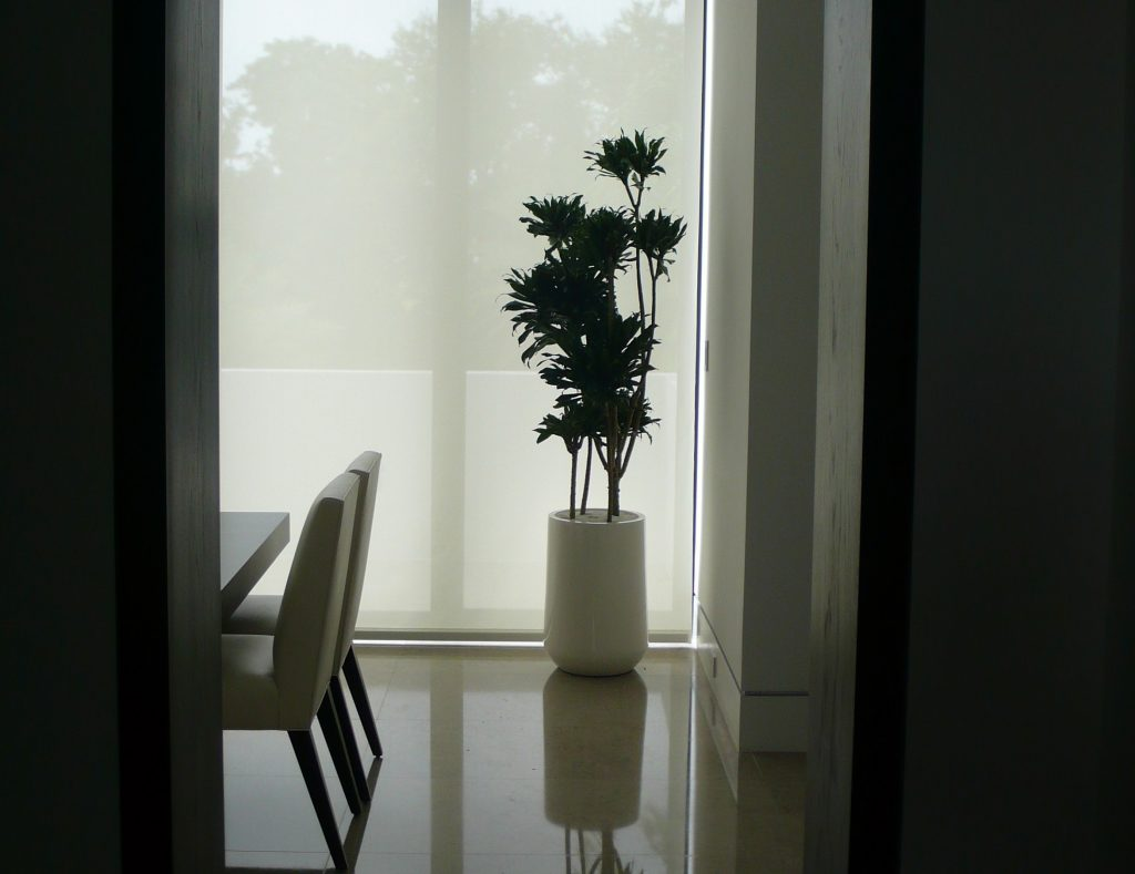 Floor Plants Bring The Outdoors Inside Your Home Or Office Plant