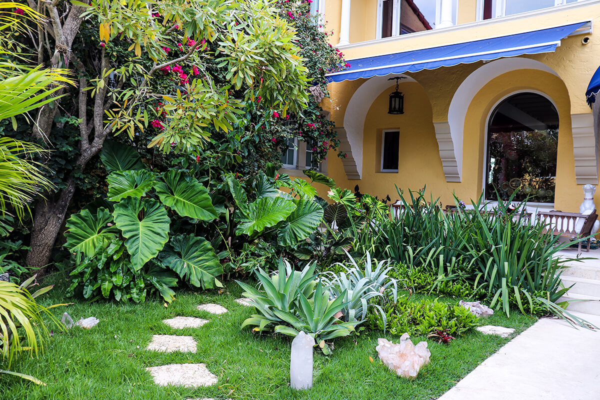 TROPICAL LANDSCAPE DESIGN (PRIVATE RESIDENCE) - Plant The ...
