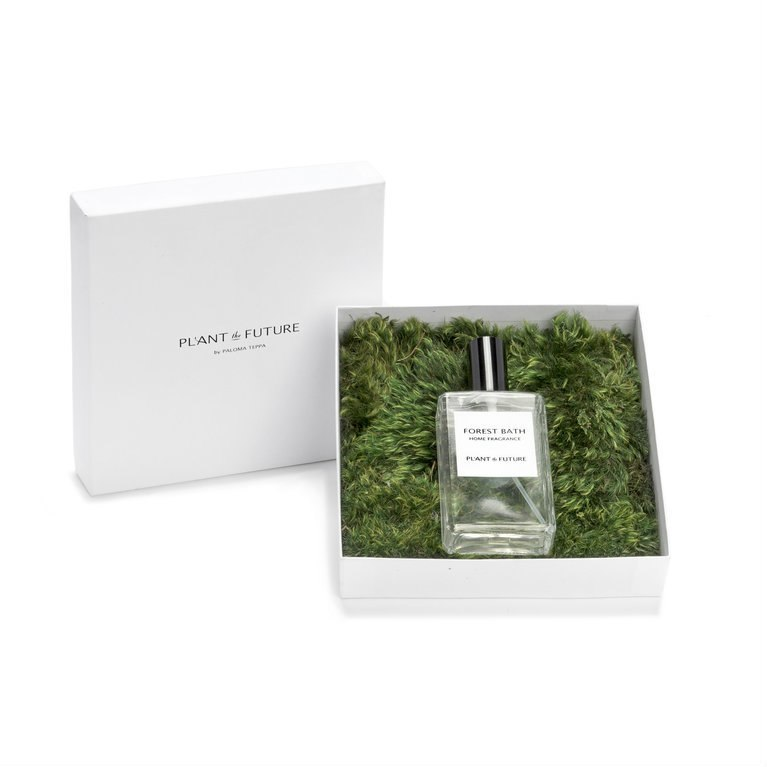 home fragrance forest scent