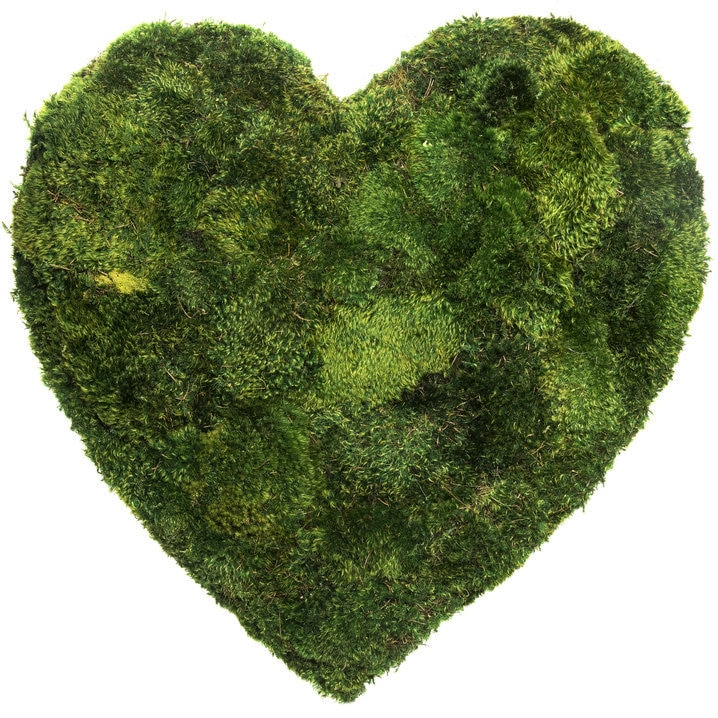 wall moss heart shaped